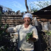 Rescatamos la herbolaria tradicional mexicana