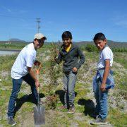 Desarrolla Voluntariado labores de reforestación