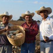 Implementa GCM programa de agricultura sustentable